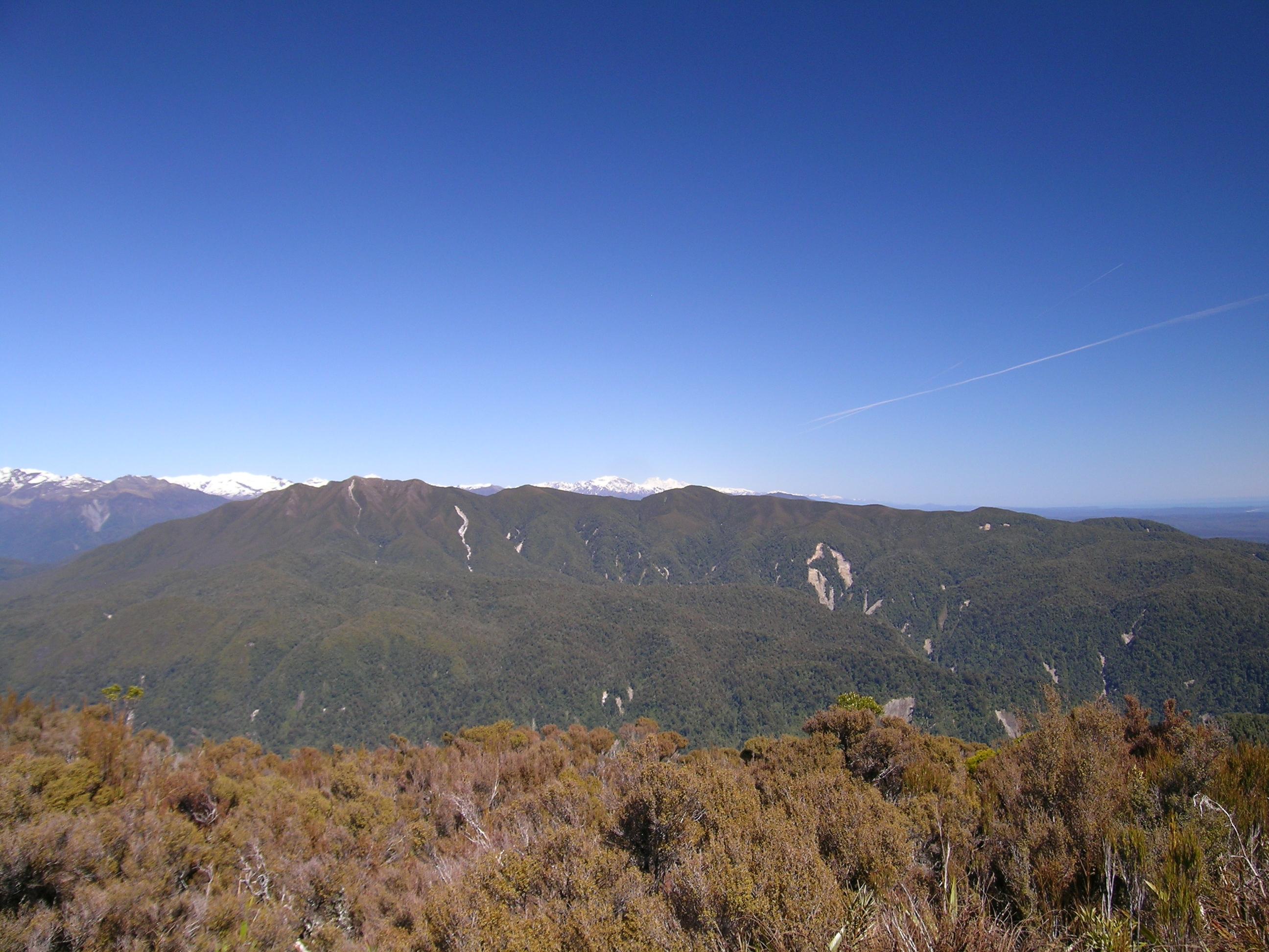 NZ landslides